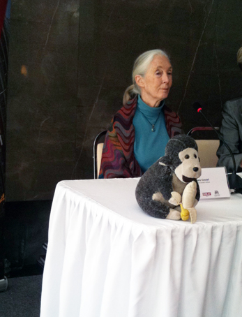 jane goodall and mr  h